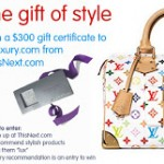 Win $300 at eLuxury!