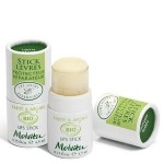 Sponsored Post: Melvita Lips Stick