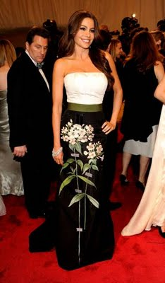 MET Ball 2011 Fashion: Sofia Vergara in Carolina Herrera