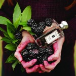 Jo Malone Blackberry And Bay Cologne Review