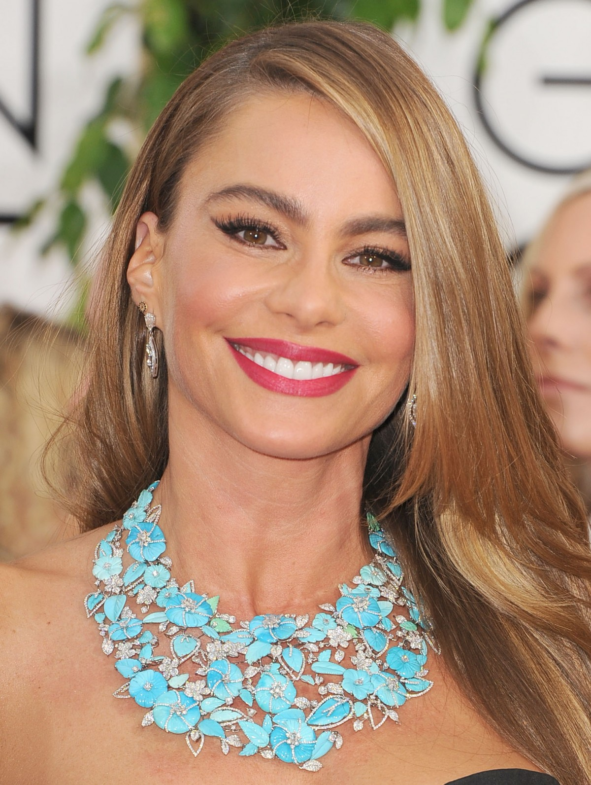 Golden Globes 2014: Sofia Vergara's Makeup