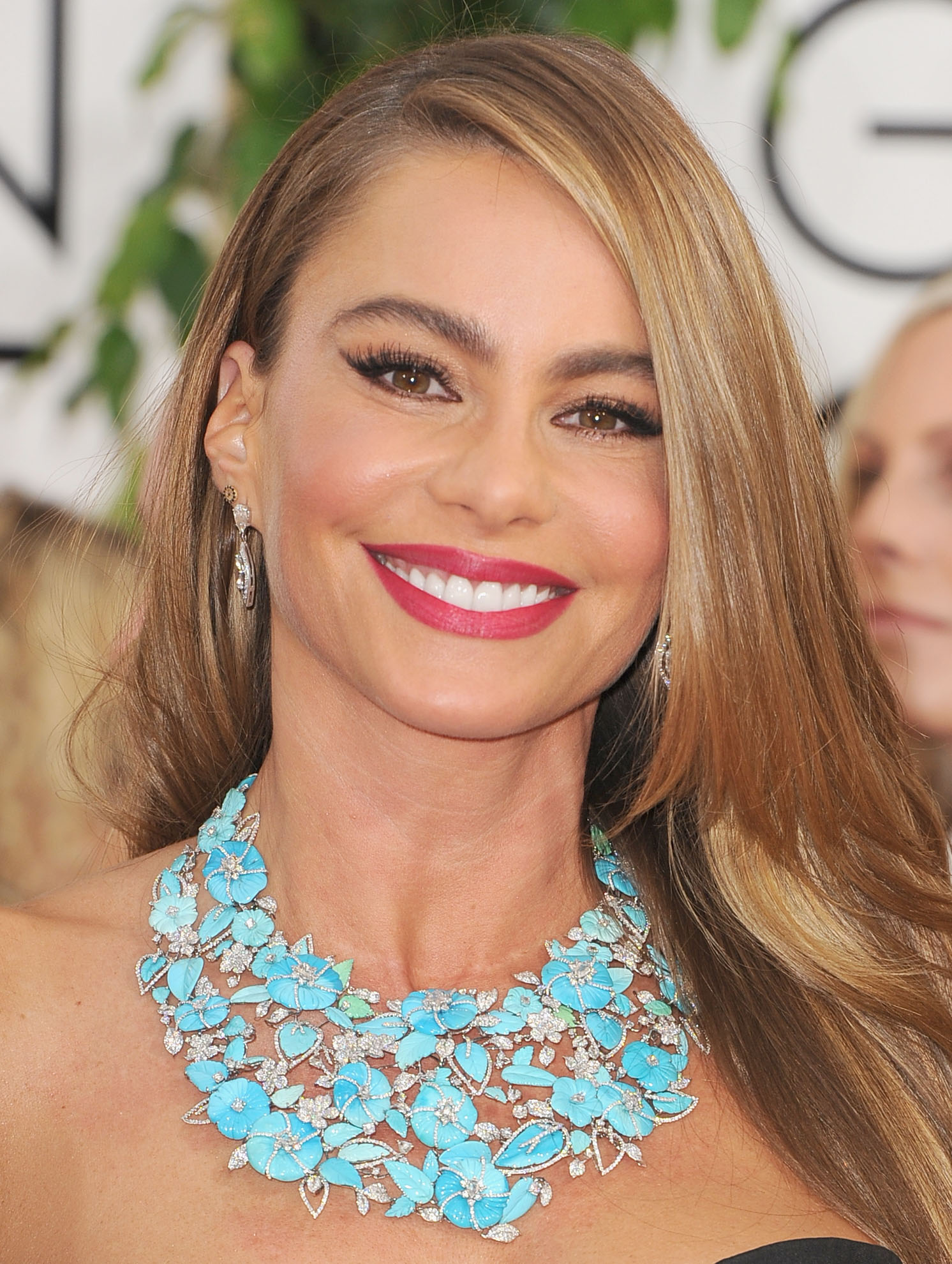 Golden Globes 2014: Sofia Vergara's Makeup | Rouge 18