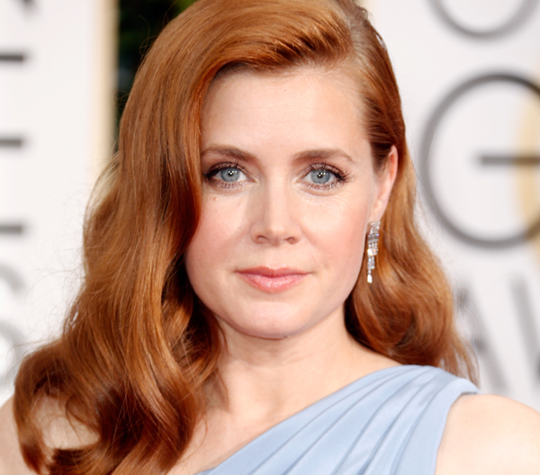 2015 Golden Globes Makeup: Amy Adams