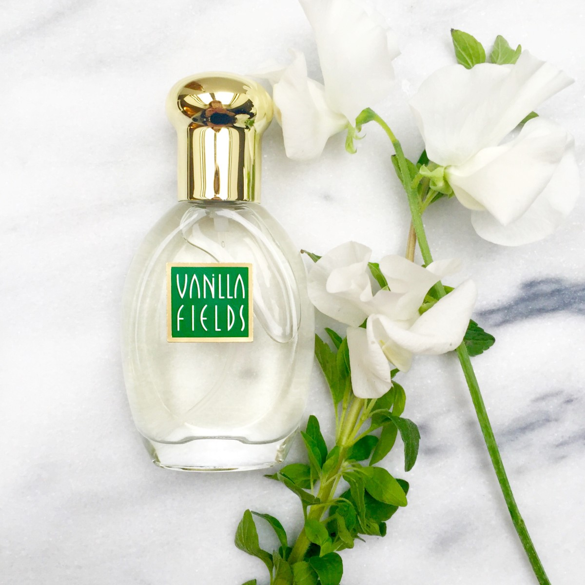 #FlashbackFriday: The Fragrance Angela Chase Would Have Worn