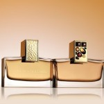 Private Collection Amber Ylang Ylang by Aerin Lauder