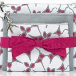 Limited Edition Holiday Cosmetic Cases from Kérastase
