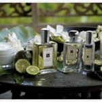 Jo Malone's Sweet Lime & Cedar Collection