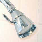 Vomitatious News: Your Shower Head Contains Up to 15 Kinds of Bacteria