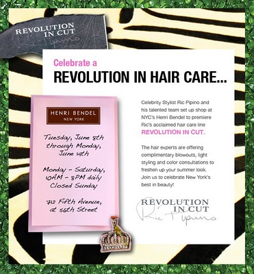 Get a Blowout, Styling or Color Consultation from Ric Pipino!