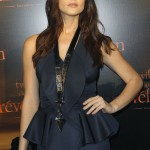 "Ashley Greene's Makeup Look At The ""Breaking Dawn"" Premiere In Paris"