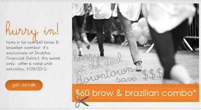 $60 Brow/Brazilian This Week At Shobha Financial District
