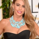 Get The Look: Sofia Vergara's Golden Globes 2014 Hairstyle